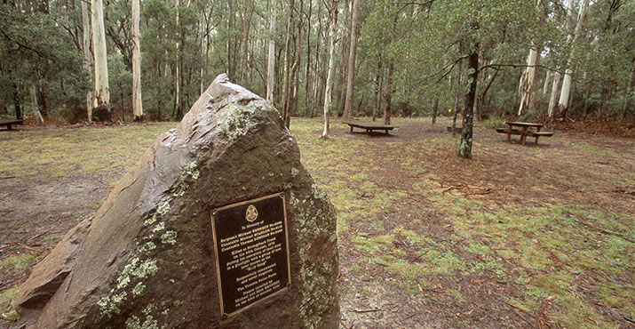 Stringybark Creek Rest Area